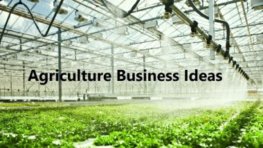 Agriculture Business Ideas: खेती से जुड़े इन बिजनेस से कमाया जा सकता है अच्छा पैसा