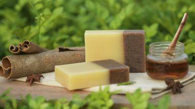 Soap Making: सोप मेकिंग बिजनेस से हर महीने कमाएं लाखों, ऐसे करें शुरू